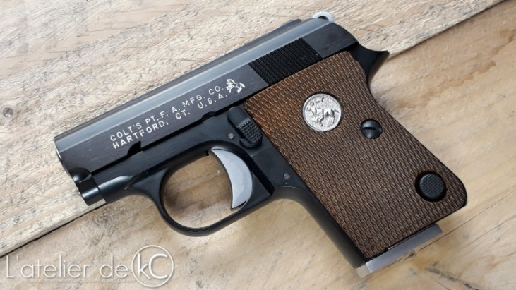 WE colt 25 gbb custom engraving full markings1