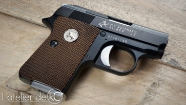 WE colt 25 gbb custom engraving full markings4