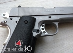 Airsoft GBB custom colt delta elite Guarder kit2