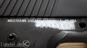Nighthawk custom GRP recon RWA-4